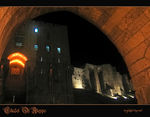 Title: CITADEL OF ALEPPO  - The Entry Gate