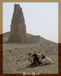 Title: PALMYRA - The Tower Tomb