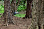 Title: Bike in the Woods.Canon EOS 600D