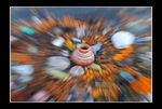 Title: outzooming