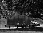 Title: Lazy afternoon at the park