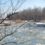 Title: Ice flows on South Platte River