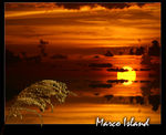 Title: Marco Island