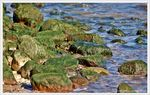 Title: green stones and blue seanikon d40