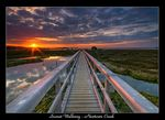 Title: Sunset Walkway - Newtown CreekNikon D 300