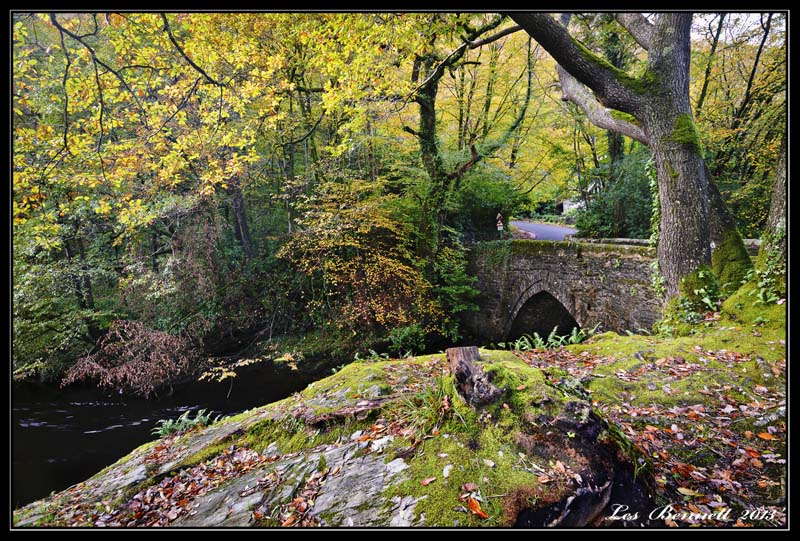 Autumn at Denham Bridge