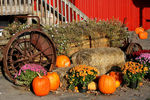 Title: Harvest Time Wagon