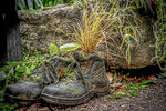 Title: Old Boots