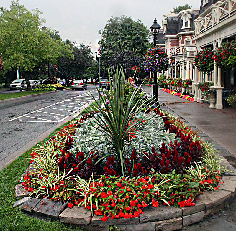 Lovely Streetscape