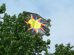 Title: kite eating treePanosonic Lumix DMC-FZ3
