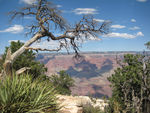 Title: Grand Canyon; Southern Rim
