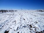 Title: Snowy PanoramaCanon PowerShot A2200