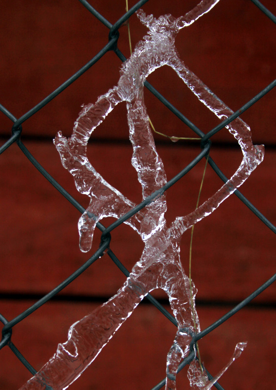 Fence from ice