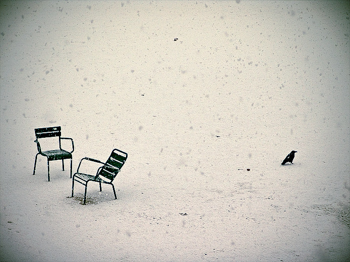 Two chair and a raven
