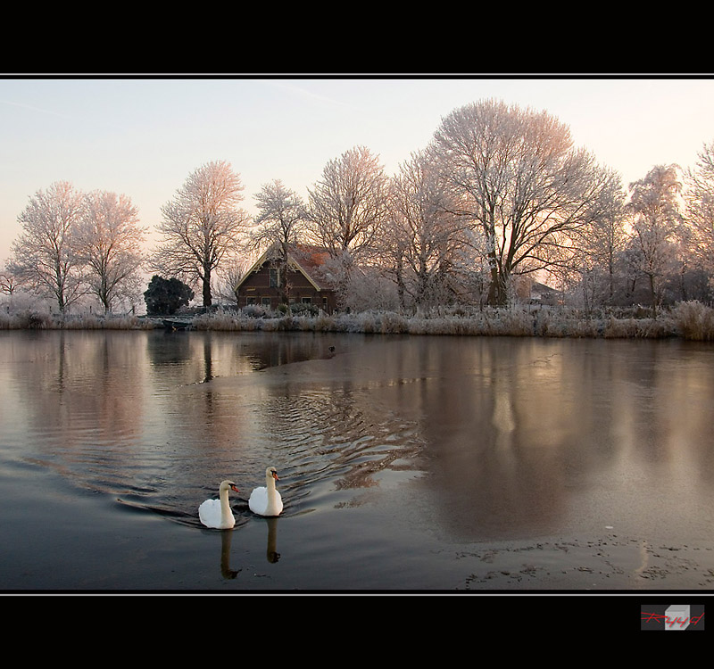 winter in Holland [4]