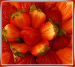 Title: THE STRAWBERRY EFFECT