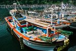 Title: Fishing Boats at SeogwipoPentax Me Super