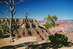 Title: Grand CanyonPentax Me Super