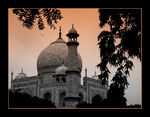Title: Taj in Black & White
