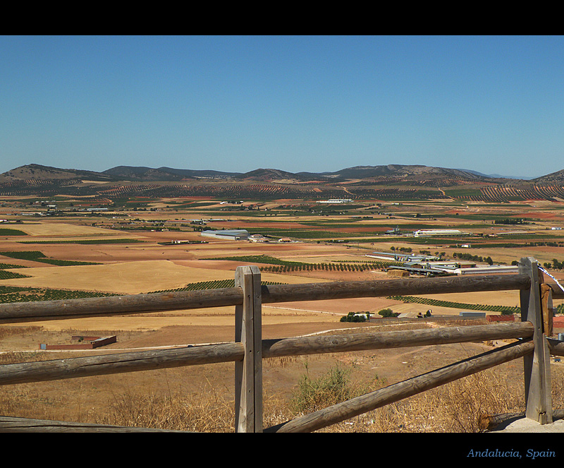 Plains of Andalusia