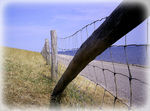 Title: Fence