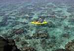 Title: kayak on the reef