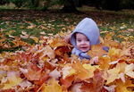 Title: Fall Baby