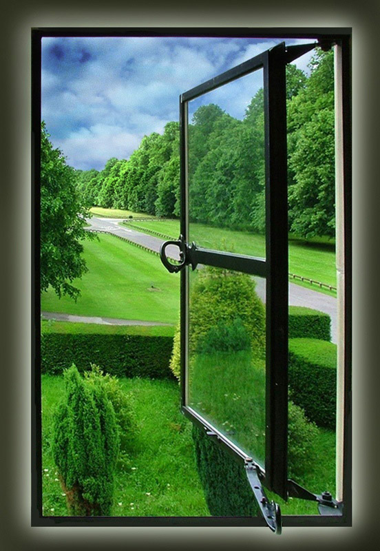 View from a Window