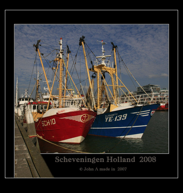 The Workhorses  of the Sea