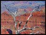 Title: Grand Canyon