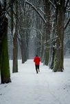 Title: Jogging in winterNikon D70