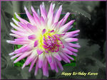 Title: Birthday Wishes for KarenOlympus C-760 UZ