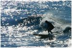 Title: Surfing in the SunCanon EOS 400D