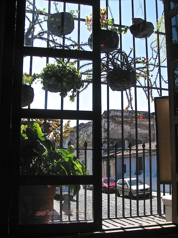 Window and planters