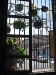 Title: Window and planters