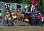 Title: Rodeo