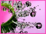 Title: Pink drops - sure that only can be me...