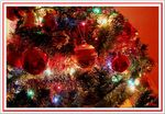 Title: It�s Christmas time...