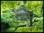 Title: Teahouse in the gardenPentax Optio S 4