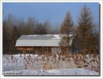Title: *Old Barn*