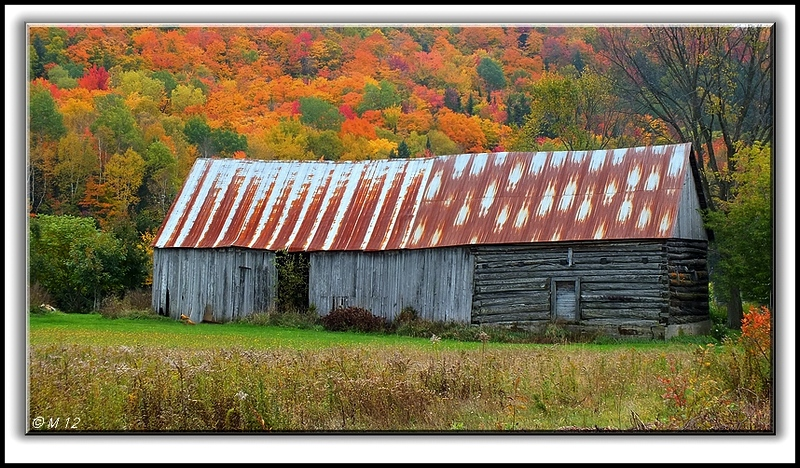 *Very Old Barn*