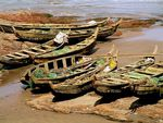Title: Fishing boats