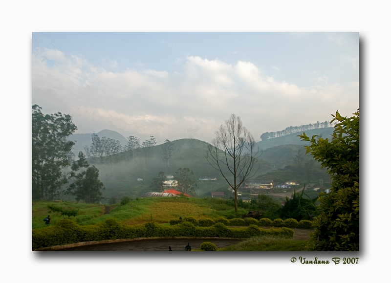 Beautiful morning of Munnar