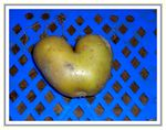 Title: potato heartCasio Exilim EX-Z500