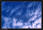 Title: Spider in the sky