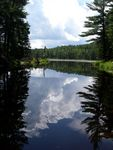 Title: Algonquin Reflection