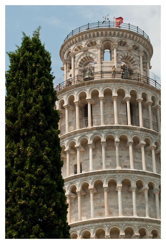 The Leaning Tree of Pisa