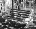 Title: ..::Bench @ Blue Moon::..