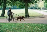 Title: The biker and his dogMinolta Dynax 404si