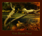 Title: Cold Blooded Creek